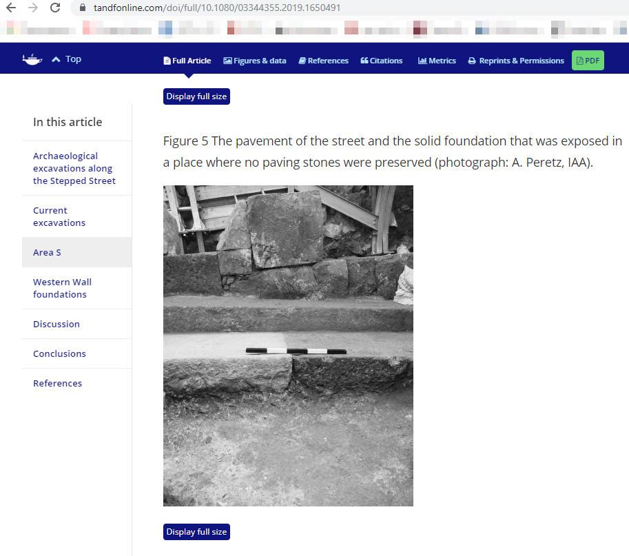 Скриншот с tandfonline.com