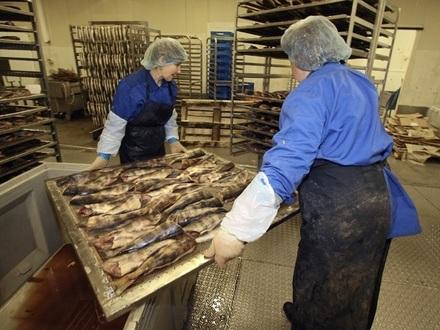 Рыбку съел. Курский врач получил контроль над рыбной империей петербургского миллиардера