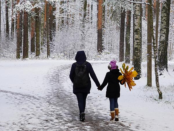 Осадки в Петербурге в полтора раза превысили месячную норму. Но снегу горожане рады