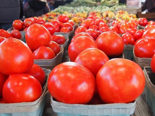 А помидор смог. Российский томат вышел победителем из продуктового эмбарго — все равно не едят