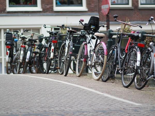 Как в Боготе. Голландские эксперты за деньги Евросоюза рассказали, как посадить петербуржца на велосипед и отправить в Финляндию