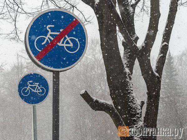 На велодорожки запускают тяжеловесов. Смольный планирует передать двухколесную инфраструктуру лидерам рынка