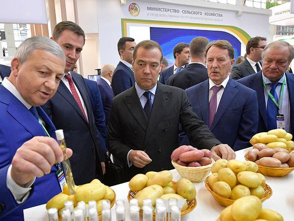 Короли и капуста. Ой. Медведев и картошка. Почему у нас нормальный картофель стоит, как «Боинг»