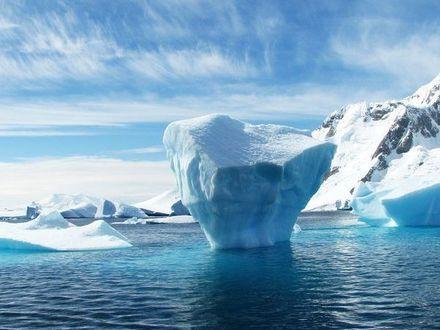 Викторина: Что вы знаете об Арктике?