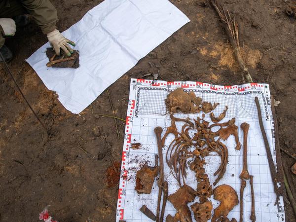 Поисковики нашли красноармейцев, погибших в 1941, под завалами строительного мусора