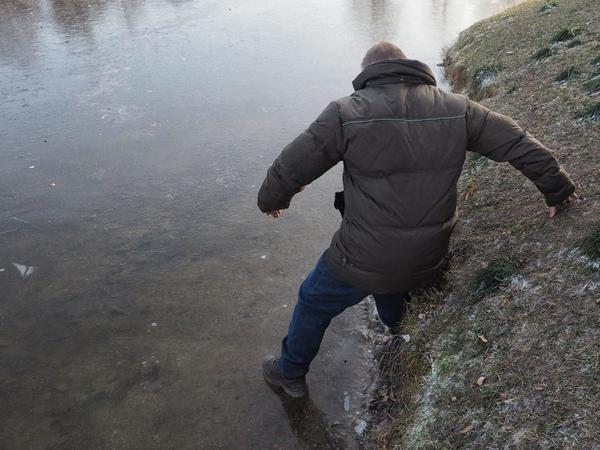 Зима близко. Петербуржцы проверяют крепость первого льда в Таврическом саду