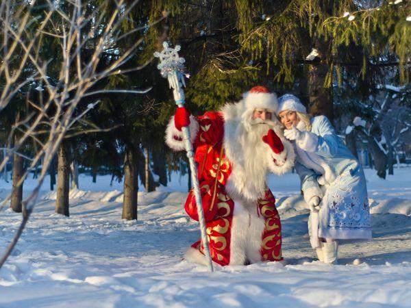 Новый год на Царскосельских холмах: от семейных посиделок до шумных вечеринок