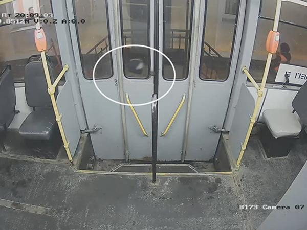 Появилось видео нападения на кондуктора в Стрельне. «Ниндзя» с огнетушителем ждал жертву на остановке