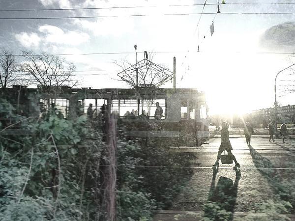 Трамвай в поле не воин. Скоростная линия Колпино – «Шушары» уезжает еще на год вперед