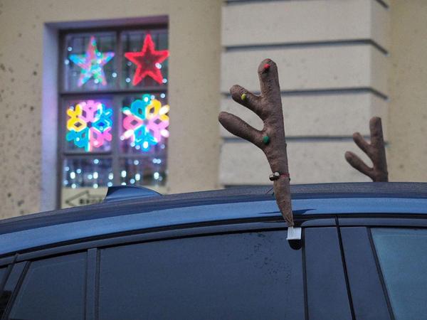 Смотрите, как Петербург раскачивает новогоднее настроение