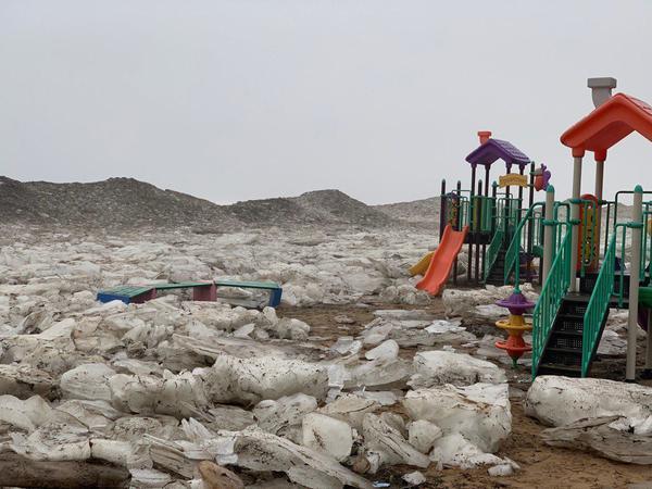 На берегу Финского залива выстроилась ледяная ограда