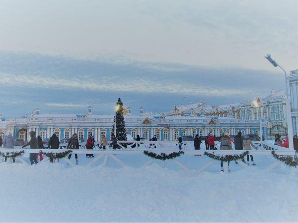 Зимние забавы в Царском селе