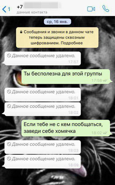 скриншот фрагмента переписки//предоставлено Анастасией Михайловой