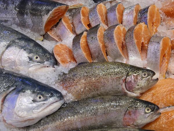 Красной рыбе заморозили цены. Почему дешевый лосось не доплыл до прилавков
