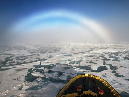 «Северный шельф - это не про бизнес». «Капитан Арктика» - о борьбе за деньги на полярных проектах
