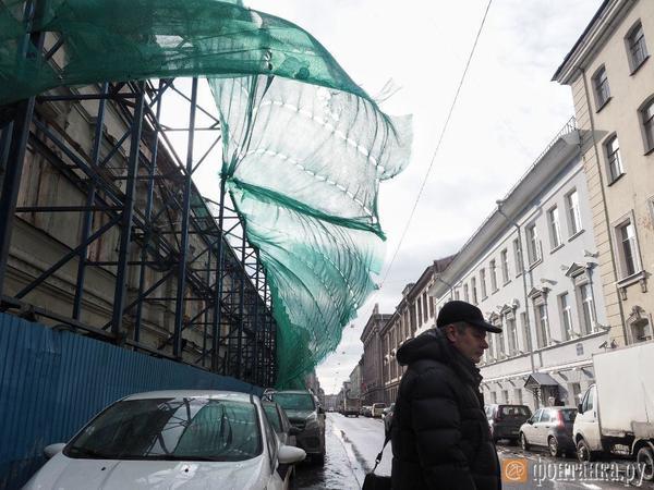 Синоптики предупредили о потенциально опасном ветре в Петербурге