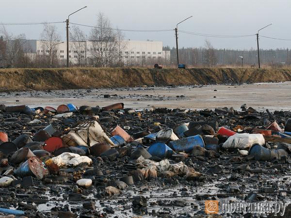 «Красный Бор» не влезает в «Чистую страну». Токсичный полигон Петербурга ждет волшебной палочки Москвы