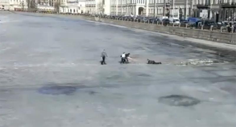 кадр из видео Дарьи Литвиновой//facebook.com