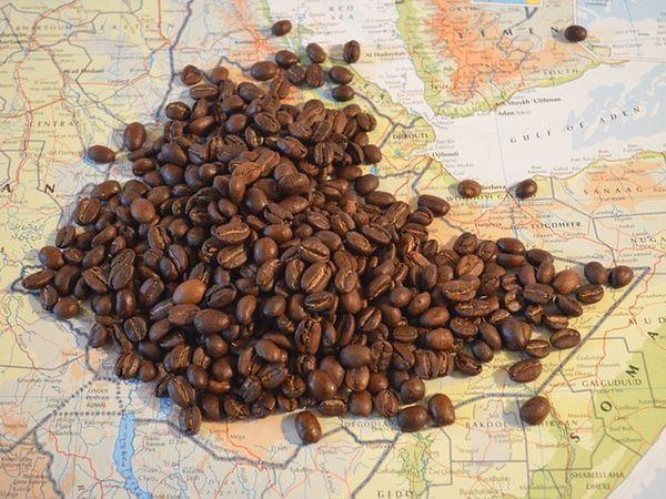 Эфиопия намерена наводнить российский рынок высококачественным кофе