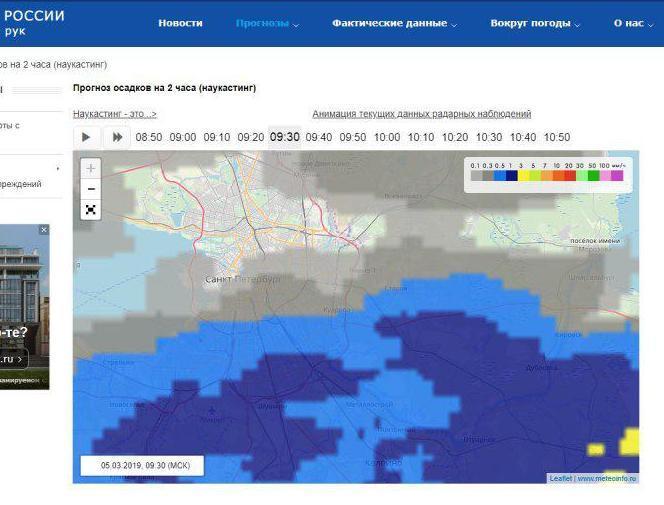 Коммунальщики могут не торопиться. К 10 утра Петербург снова накроет снегопад (Иллюстрация 1 из 1) (Фото: скриншот с сайта meteoinfo.ru)