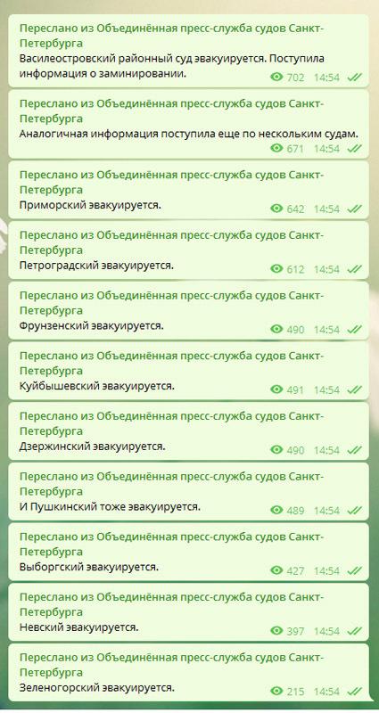 скриншот/телеграм-канал Объединенная пресс-служба судов Санкт-Петербурга