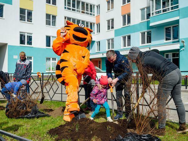 Группа «Эталон» провела озеленение дворов ЖК «Ландыши»