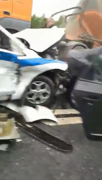 Кадр из видео канала «Ленинградская область Он-Лайн»/YouTube