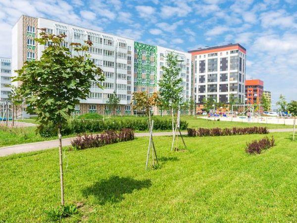 Благоустройство в голландском стиле: все для семьи в жилом квартале «Янила»