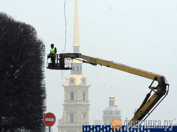 90-60-90 для тополей и лип отменяются. Петербургские чиновники не готовы прописывать стандарты для зелени