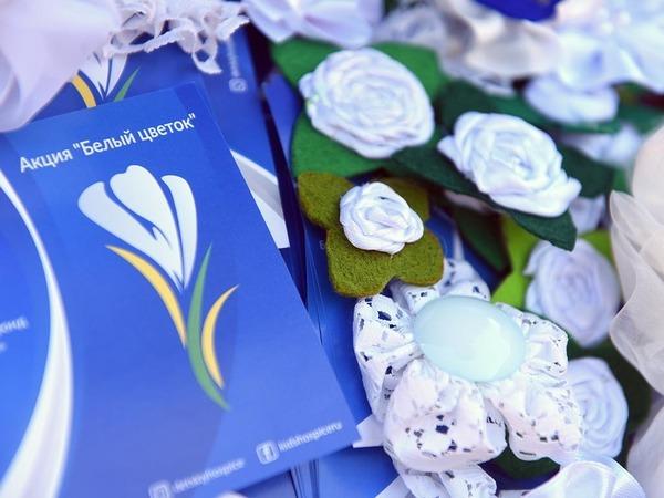 В Петербурге раздают белые цветы, чтобы помочь тяжелобольным детям