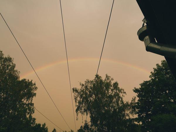Дождливая красота Петербурга. Горожане показывают в соцсетях пятничный ливень
