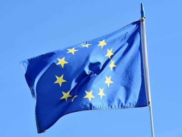 Финляндия принимает председательство в ЕС. Санкции останутся, но усилится экологическое сотрудничество