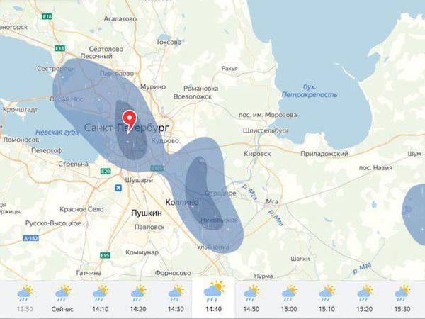 Сюрприз для синоптиков и Водоканала. На Петербург обрушился нежданный ливень