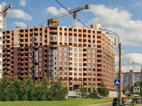 ЖК «Новое Купчино» от компании «Строительный трест»