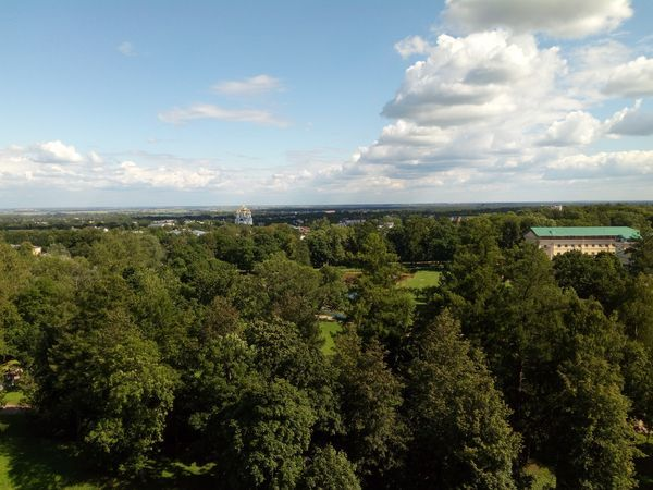 Пушкинский район: взгляд с высоты