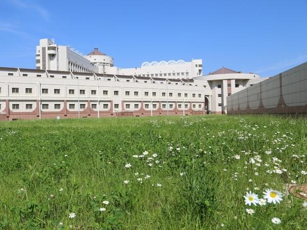 Сколько проедают Кресты? Во что обходится крупнейшая тюрьма Европы