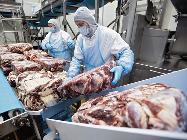 «Мясо неизвестного животного». Билл Гейтс и Ди Каприо накормят россиян вегетарианской говядиной