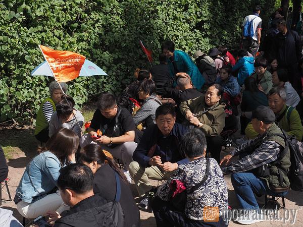 Глава ГМЗ «Царское Село»: Китайские туристы для нас ничем не отличаются. Но китайцев полтора миллиарда. А Янтарная комната одна
