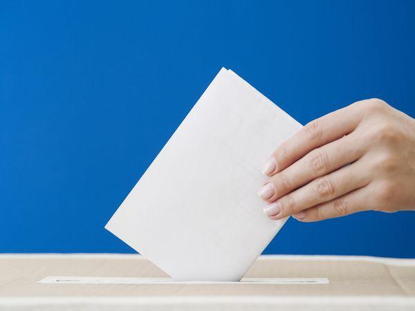 Прошли не все: почему не всем удалось «дожить» до выборов  8 сентября