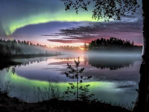 «Когда небо над тобой неожиданно взрывается». Завораживающий танец цветных сполохов в Финляндии сняли на видео