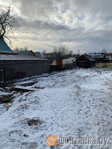 участок Наталии Огурцовой после сноса ее дома